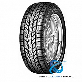 PointS Winterstar 2 175/70R13 82T фото, цена 1